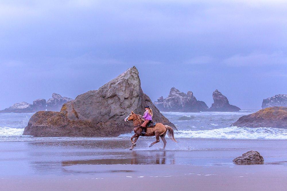 Bandon Oregon Horse Riding Web Design